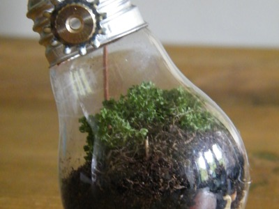 Marieke Elizabeth Design DIY Tutorial: Recycling Old Light Bulbs to Create Beautiful Mini Terrariums