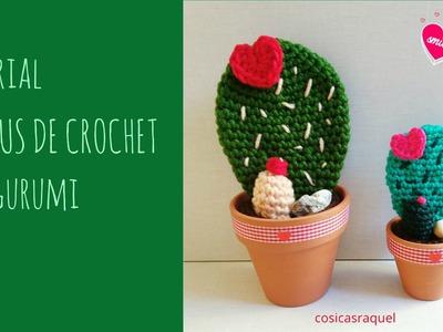 Tutorial Cactus de Crochet Amigurumi