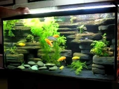 DIY Simple aquarium decorations