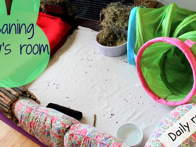 My daily cleaning routine for my bunny's room