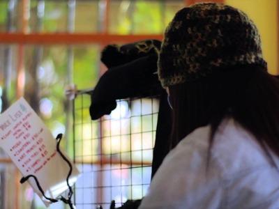 Shop Party - A Sonoma County Craft Fair