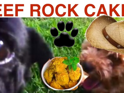 DOG Beef Cakes - easy DIY Dog Food - a tutorial by Cooking For Dogs