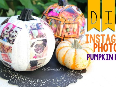 INSTAGRAM PHOTOS Pumpkin Decor ♥ DIY