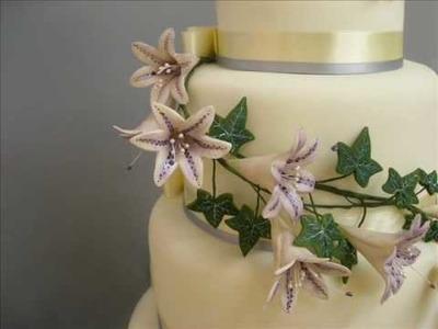 Shooga Wedding Cakes 2010