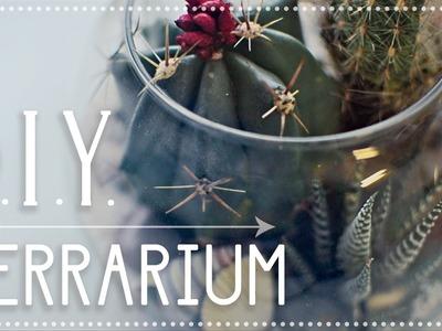 ✂ DIY 4 Step Terrarium