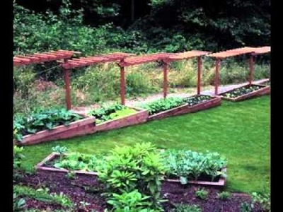 DIY Simple Backyard garden design ideas