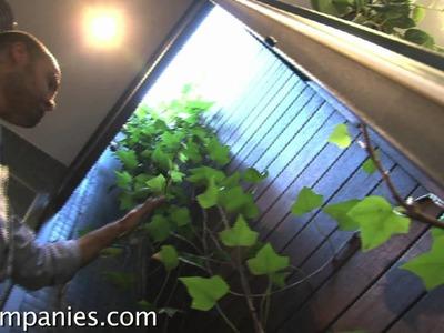 """Zen meets tiny homes: movable """"paper"""" walls transform spaces"""
