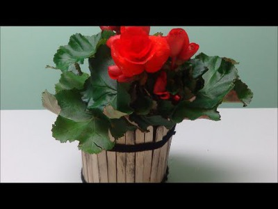 Best Mother's Day Gift Ideas DIY: Cute Tub with Flowers