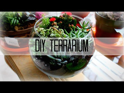 DIY Terrarium Tutorial