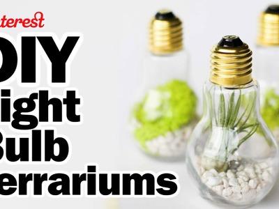 DIY Light Bulb Terrariums - Man Vs Pin - Pinterest Test #56