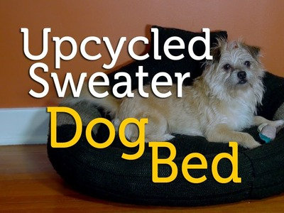 Upcycle an Old Sweater into a Dog Bed | DIY