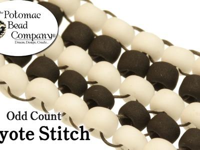 Odd Count Peyote Stitch Instructions