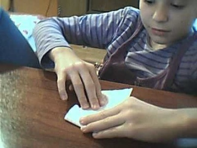 Broscuta origami