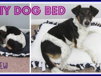 {Step-by Step NO SEW} DIY Dog Bed