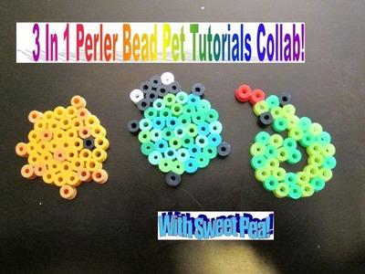 3 In 1 Perler Bead Pet Tutorials Collab!!!!! ♫ With Sweet Pea