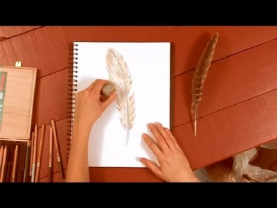 How to Draw Feathers With a Colored Pencil : How to Draw with Colored Pencils