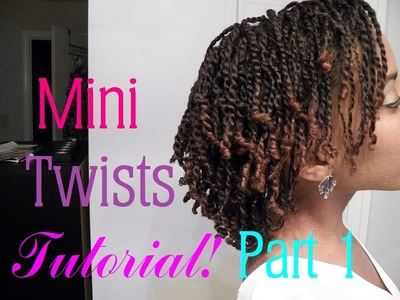 How to Do Mini Twists on Short.Medium Length Natural Hair Part 1