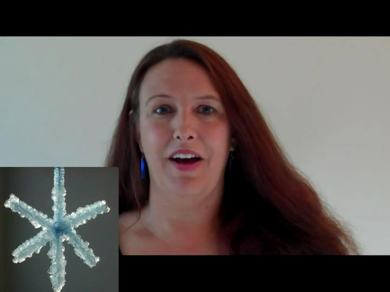 Borax Crystal Snowflake