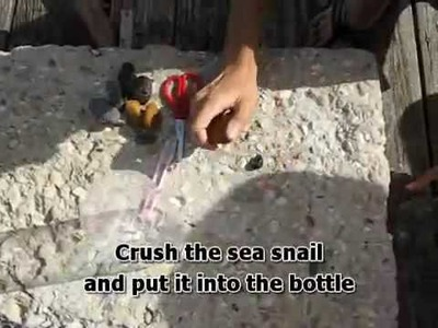 How to Make a Fish Trap in 30 Seconds