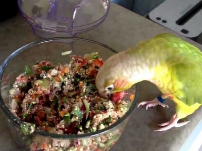 How To Make Fresh Birdy Mash