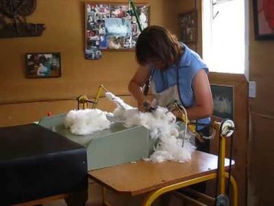Angora Rabbit Shearing in New Zealand