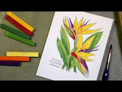 Stamping: coloring a bird of paradise with chalk and water