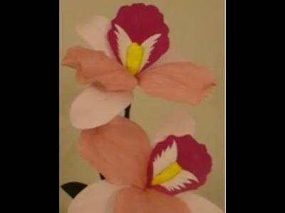 Paper Flower - Cattleya. orchid