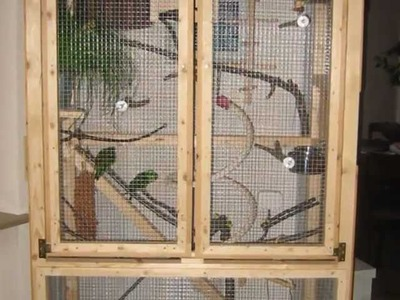 How to build a comfortable inside aviary for small parrots