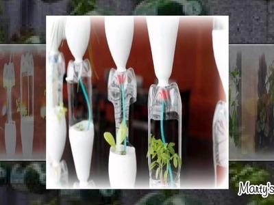 10 Best Bottle Gardening Ideas