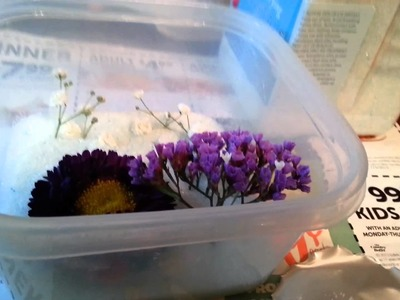 My tutorial on putting fresh flowers in Silica Gel