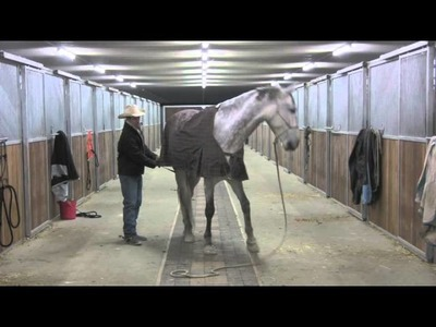 Blanketing the hard to blanket horse