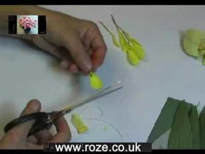 Paper flower making kit-Iris hybridiris, (fm30), Part 1