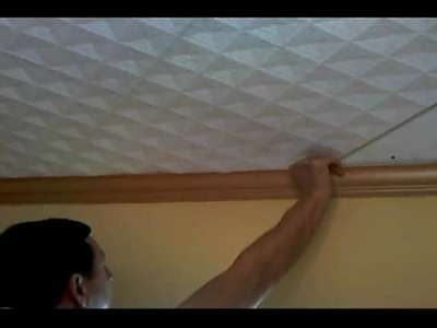 Styrofoam 20x20 Ceiling Tiles Installation Instructions from Euro-Deco Part 1