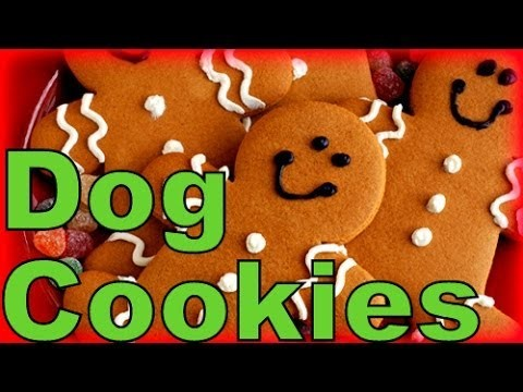 How to Make Gingerbread Dog Cookies Christmas Treats |  Snacks with the Snow Dogs 6