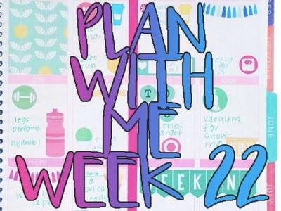 Plan With Me: Week 22