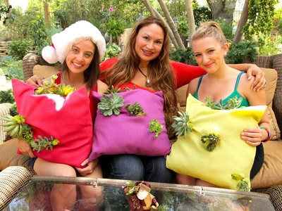 "Succulents: Make a ""Living Succulent Tapestry Pillow"" in Under 5 Minutes!"