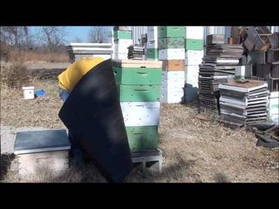Beekeeping: How To Wrap Your Bee Hive For Winter