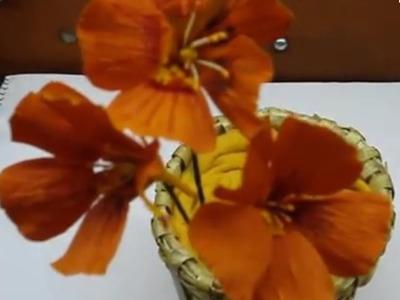 Paper Flower - Nasturtium