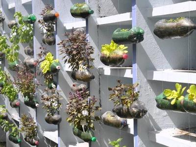 The hanging garden project - American School of Recife