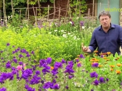 How to create a cottage garden - Waitrose Garden