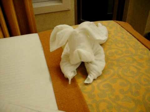 Carnival splendor room steward making a towel dog