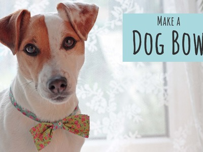 How to Make a Dog Bow Tie