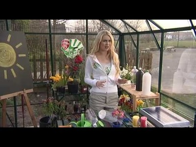 How to make your own mini greenhouse - npower Climate Cops
