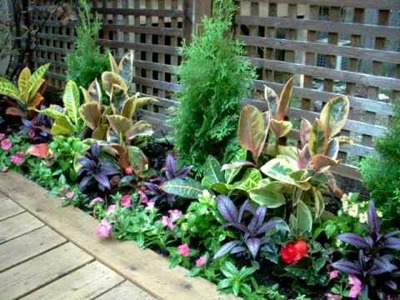 ***URBAN OASIS GARDEN DESIGN*** by Tu Bloom Garden & Landscapes