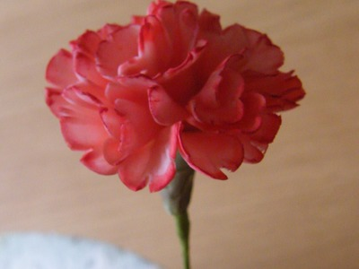How to make a Gumpaste Flowerpaste Carnation (New Version including Audio)