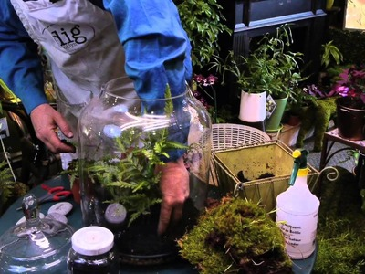 How to Make a Fern Moss Terrarium : Terrariums & More