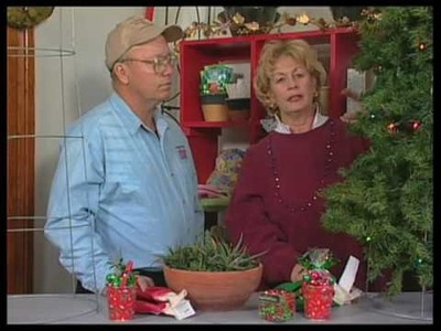 How To Make Christmas Trees From A Tomato Plant Cage