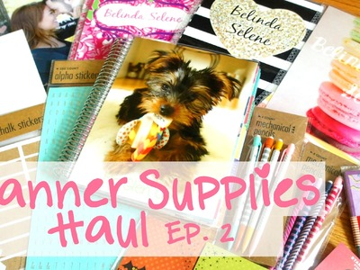 Planner Supplies Haul: EC Covers, Washi Tape, Sticky Notes | Ep.2