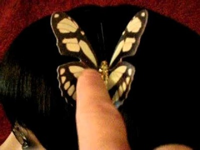 Motion Hair Butterfly Clip