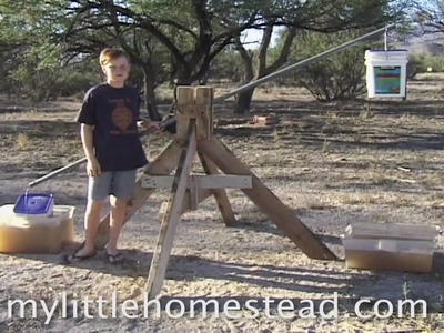 Simple Homemade Animal Feed Sprouter